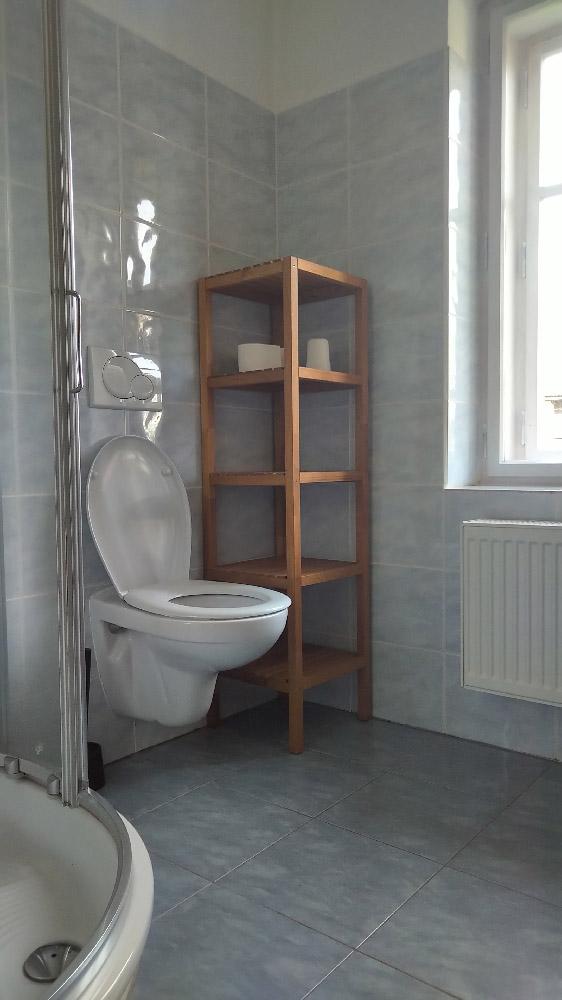 koupelna_aparman_pokoj_c_2